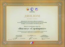 Diploma of the Ministry of Regional Development (2012)